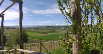 Landscape from Novello