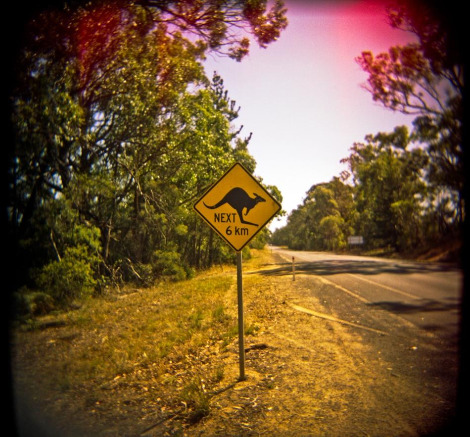 Lost Highway, Australia