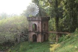 The Cinnamon Hill