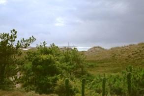 The isle of Ré, île de Ré; on the beautiful French Atlantic coast