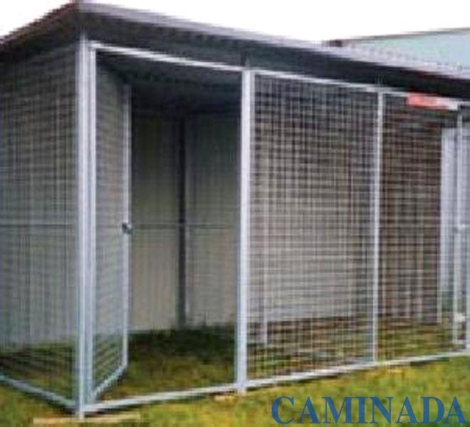 box per cani canile