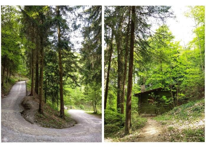 Uetliberg - La montaña de Zurich