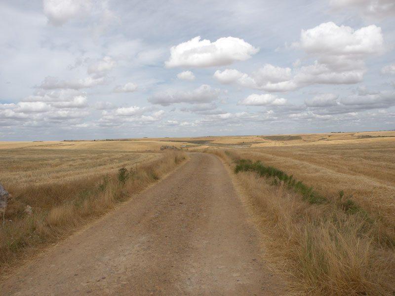 meseta route on the Camino