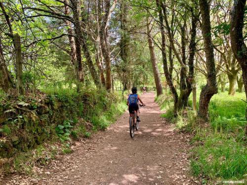 flecha camino- preparación física Camino de Santiago
