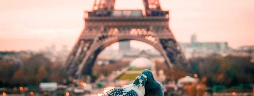 Francia - París - Tour Eiffel