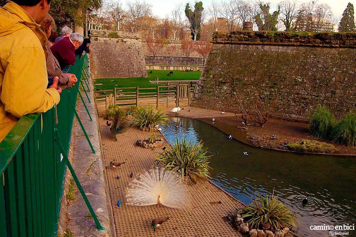 Jardines de la Taconera de Pamplona
