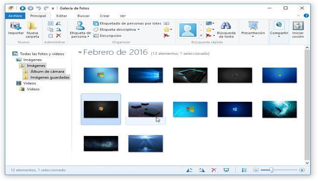 Galería de Fotos de Windows: Alternativas a Picasa