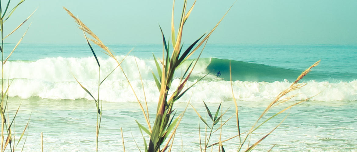Camino Surfcamp Andalusia Big Swell El Palmar Surfer Bottomturn EN