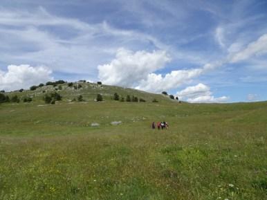 ACER Monte Cabbia DSC08842
