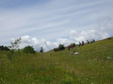 ACER Monte Cabbia DSC08844