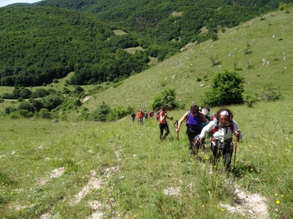 ACER Monte Cabbia DSC08851
