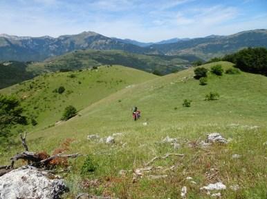 ACER Monte Cabbia DSC08853