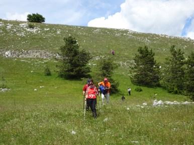 ACER Monte Cabbia DSC08860