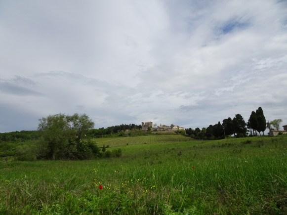 5-2019 Corbara-Titignano-11