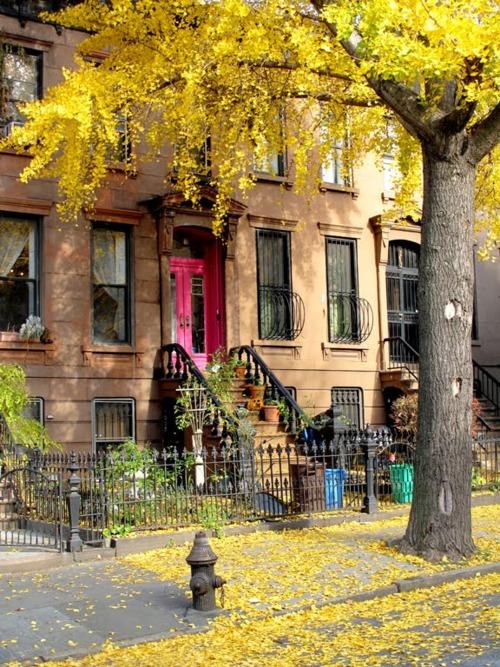 Brooklyn, New York City