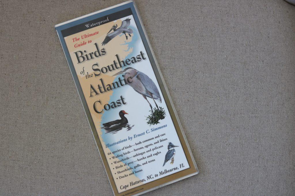 Bird identifier