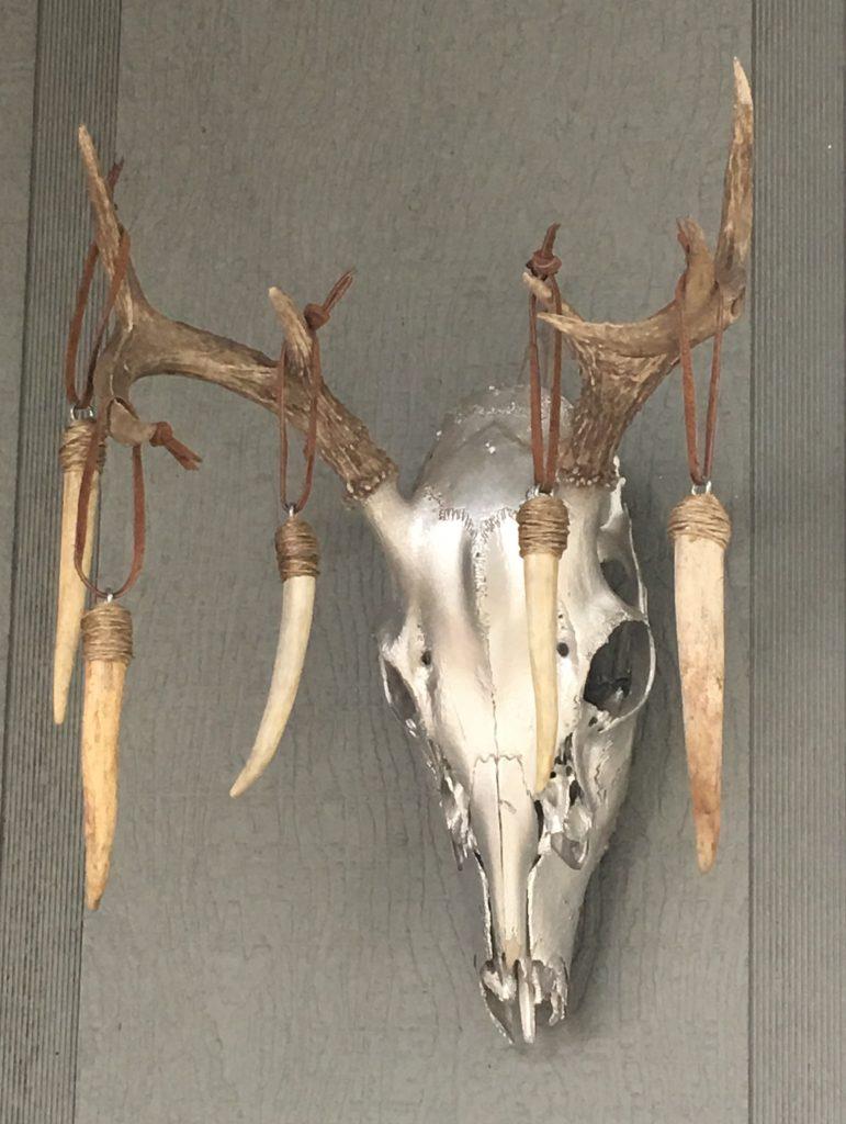 European deer mount with antler decorations
