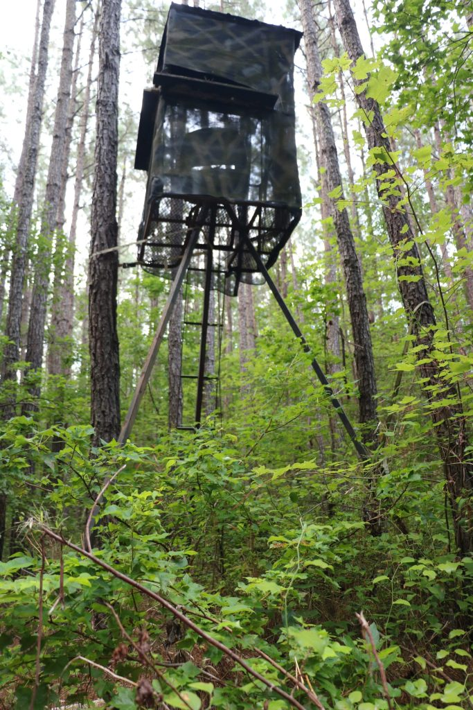 repairing and maintaining deer stands