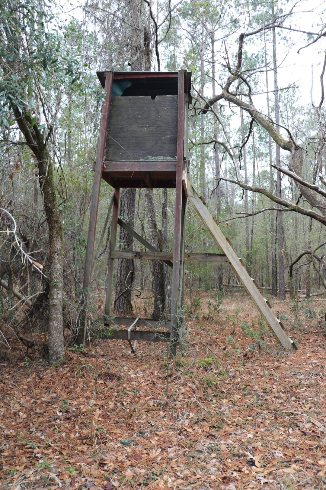 an old weathered deer stand