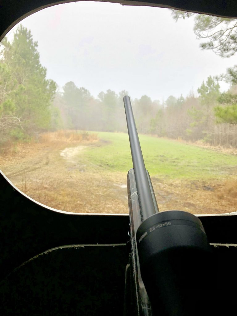 view from a hunting stand