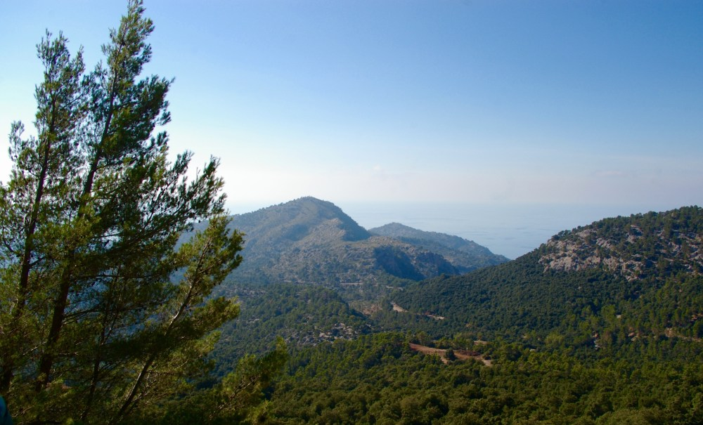Island life on Mallorca