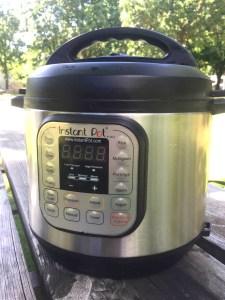 instant pot pressure cooker for RV