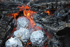orange peel campfire muffin recipe how to make orange blueberry muffins