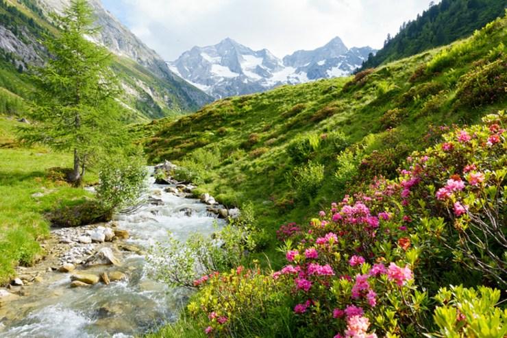 Südtirol eignet sich hervorragend für den nächsten Campingurlaub.