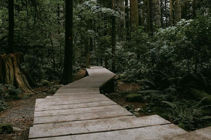 Naturlehrpfad im Spreewald
