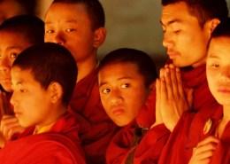 Piccoli monaci in preghiera