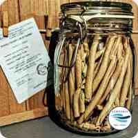 Pasta artigianale con farina di farro - fusilli cilentani
