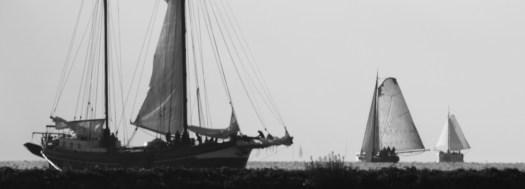 Pattbodenschiffe auf dem IJsselmeer.