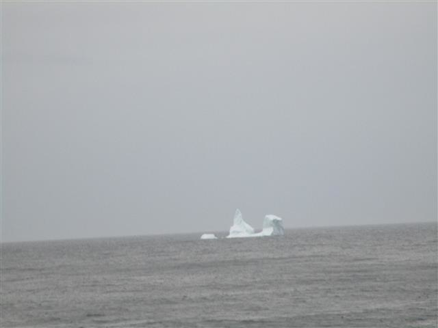 Iceberg Spotted Near Westfjords