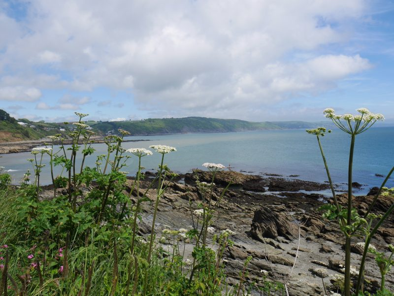 Walking the South Coast Path from Looe Caravan and Motorhome Club Site