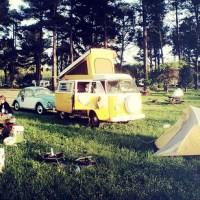 Olema Campground, Pt. Reyes