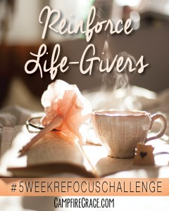 reinforce life givers pin it