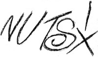 Nuts Fanzine Logo