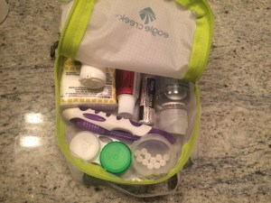 Toiletry Kit Packing List
