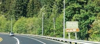Bogachiel-State-Park-Campground-01