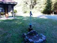 Bogachiel-State-Park-Campground-04