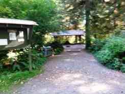 Bogachiel-State-Park-Campground-13