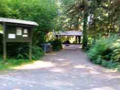 Bogachiel-State-Park-Campground-17