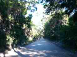 Camp Venice Retreat in Venice Florida12