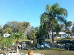 Carefree RV Resorts Shell Creek in Punta Gorda Florida2