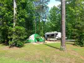Chippokes Plantation State Park in Surry Virginia11
