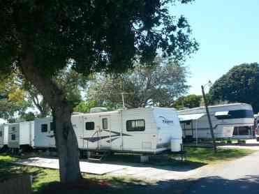 Crooked Hook RV Resort in Clewiston Florida2