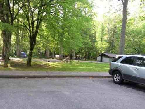 Deep Creek Campground in Great Smoky Mountains National Park near Bryson City North Carolina3