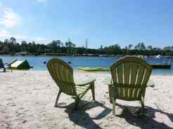 Flamingo Lake RV Resort in Jacksonville Florida18