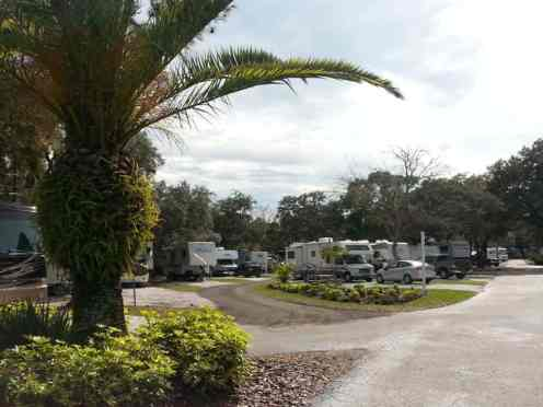 Hickory Point RV Park in Tarpon Springs Florida2