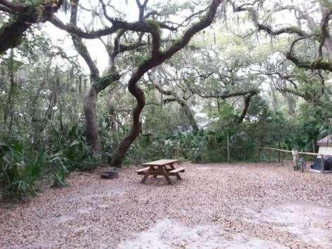 Little Talbot Island State Park in Jacksonville Florida2